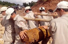 Destacan aportes de Organización no gubernamental de Peace Trees Vietnam