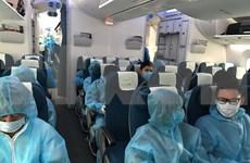 Casi 450 ciudadanos vietnamitas regresan de Corea del Sur