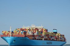 Atracarán súper carguero al puerto marítimo vietnamita de Cai Mep