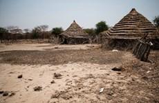 Vietnam e Indonesia llaman a resolver disputas en Abyei por medios pacíficos