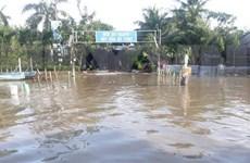 Provincia de Bac Lieu financia millones de dólares para combatir cambio climático