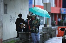 Evacúan a casi nueve mil personas en Filipinas por tifón Molave