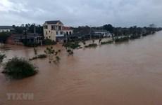 Rey tailandés expresa simpatía con Vietnam ante pérdidas causadas por inundaciones