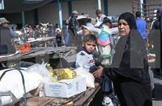Vietnam pide apoyo internacional a los palestinos para superar la crisis