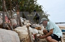 Establecen Comité Directivo Avanzado en Vietnam ante tormenta Molave