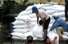 Gobierno vietnamita proporciona seis mil 500 toneladas adicionales de arroz a cuatro provincias centrales