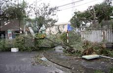 Tifón Movale provoca grandes pérdidas humanas y materiales en Vietnam