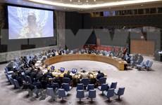 Vietnam respeta papel del derecho internacional en mantenimiento de la paz y estabilidad globales