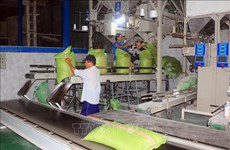 Balanza comercial de Vietnam registra superávit récord en los primeros 10 meses