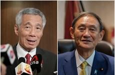 Singapur y Japón discuten fomento de relaciones bilaterales en medio del COVID-19