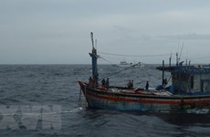 Rescatan a tres pescadores de la provincia vietnamita de Binh Dinh a la deriva en el mar
