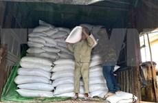 Vietnam se esfuerza por superar severas secuelas de desastres naturales