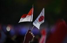 Japón e Indonesia fortalecen la cooperación en defensa