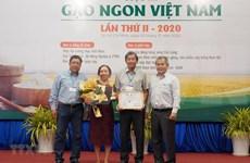 Reconocen a ST25 como la mejor variedad de arroz de Vietnam en 2020