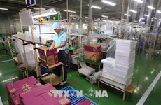 Provincia vietnamita de Dong Nai supera el plan de atracción de IED en 2020