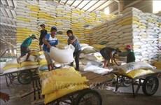 Introducirán productos agrícolas y alimenticios vietnamitas a Singapur y Malasia