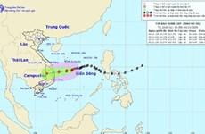 Tifón Goni se debilitará a depresión tropical antes de tocar tierra en provincias centrales de Vietnam