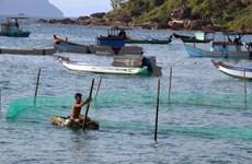 Vietnam promueve la cooperación internacional para el desarrollo de economía marítima