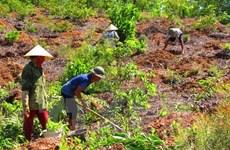 Promueven en Vietnam participación comunitaria en evaluación de impactos ambientales
