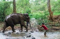 Ingresa Camboya 25 millones de dólares por ecoturismo en nueve meses