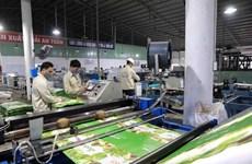 Banco Mundial destaca oportunidades de Vietnam en captar inversiones foráneas