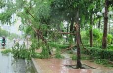 Tifón Etau deja dos muertos en la región central de Vietnam