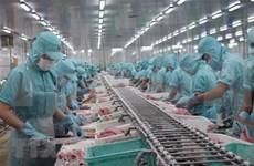 Vietnam podría ingresar fondo multimillonario por exportaciones de pescado Tra en 2020