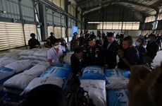 Tailandia incauta más de 11 toneladas de drogas sintéticas