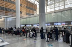 Regresan a tierra natal más de 340 ciudadanos vietnamitas en Japón