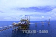 Grupo petrolero PVN entre las tres empresas más grandes de Vietnam