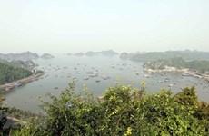 Destacan contribución de Vietnam a la conservación de las reservas de la biosfera