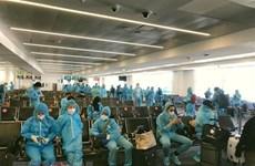 Repatrían a 240 ciudadanos vietnamitas desde Corea del Sur por COVID-19