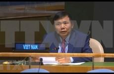 Vietnam apoya ampliación del Consejo de Seguridad de la ONU