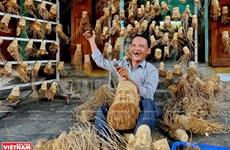 Estatuas de tocón de bambú de Hoi An