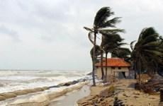 Desastres naturales provocan pérdidas de 43 millones de dólares para Ca Mau