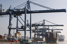 Aumenta volumen de transporte de carga por puertos vietnamitas