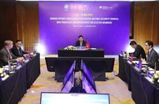 Vietnam coordina reunión de países miembros no permanentes del Consejo de Seguridad de ONU