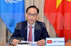 Vietnam contribuye activamente a trabajo general del Consejo de Seguridad de ONU
