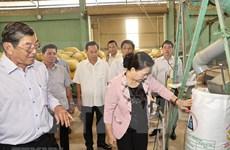 Presidenta del Parlamento vietnamita realiza visita de trabajo a provincia de Soc Trang