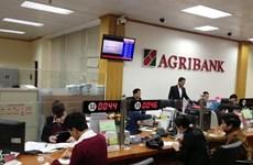 Honran a Agribank con premios de bancos destacados de Vietnam