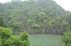 Descubra el Parque Nacional Bai Tu Long en Vietnam