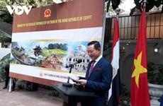 Divulgan valores culturales vietnamita en Egipto