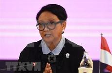 Indonesia pide a UE trato justo a sus productos de aceite de palma