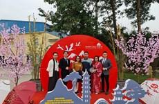 Inauguran jardín japonés en provincia norvietnamita de Hai Phong