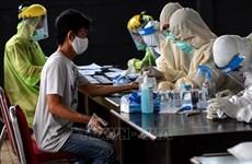 COVID-19: Alrededor del 70 por ciento de población activa de Indonesia regresa al trabajo
