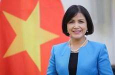 Promueve Vietnam cooperación internacional en el desminado humanitario