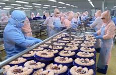 En alza exportación de productos acuáticos de Vietnam en noviembre