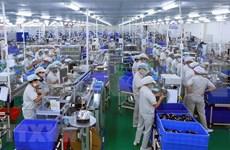 Crece Índice de Producción Industrial de Ciudad Ho Chi Minh