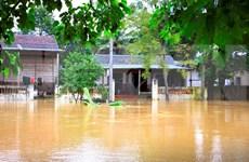 Agencia de la ONU recauda fondos para vietnamitas afectados por inundaciones