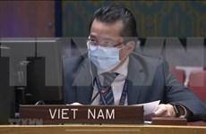 Vietnam expresa preocupaciones sobre espiral de violencia en la República Democrática del Congo